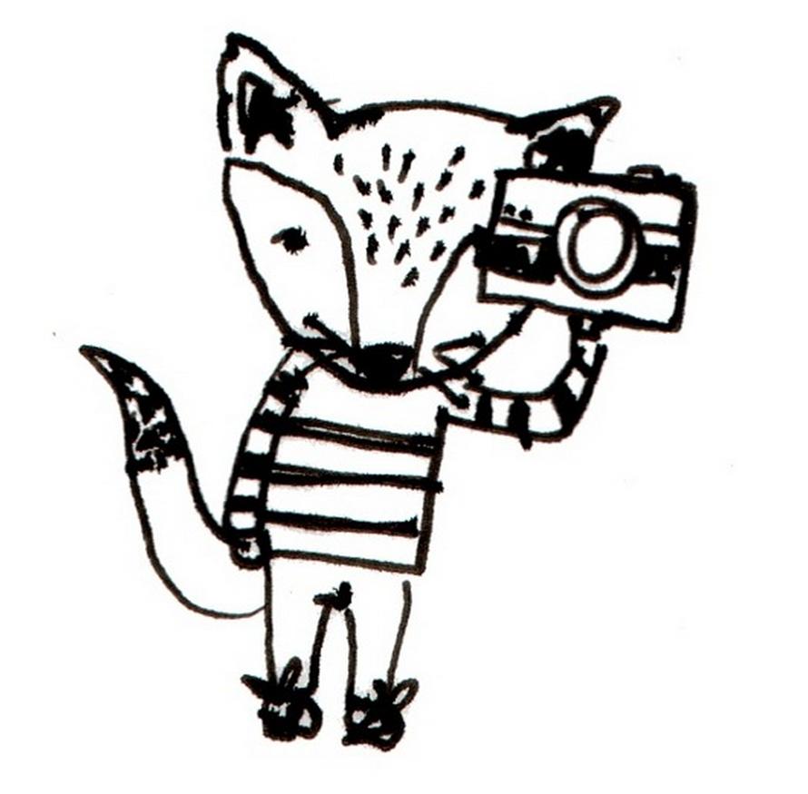 Sketch Fox Henri