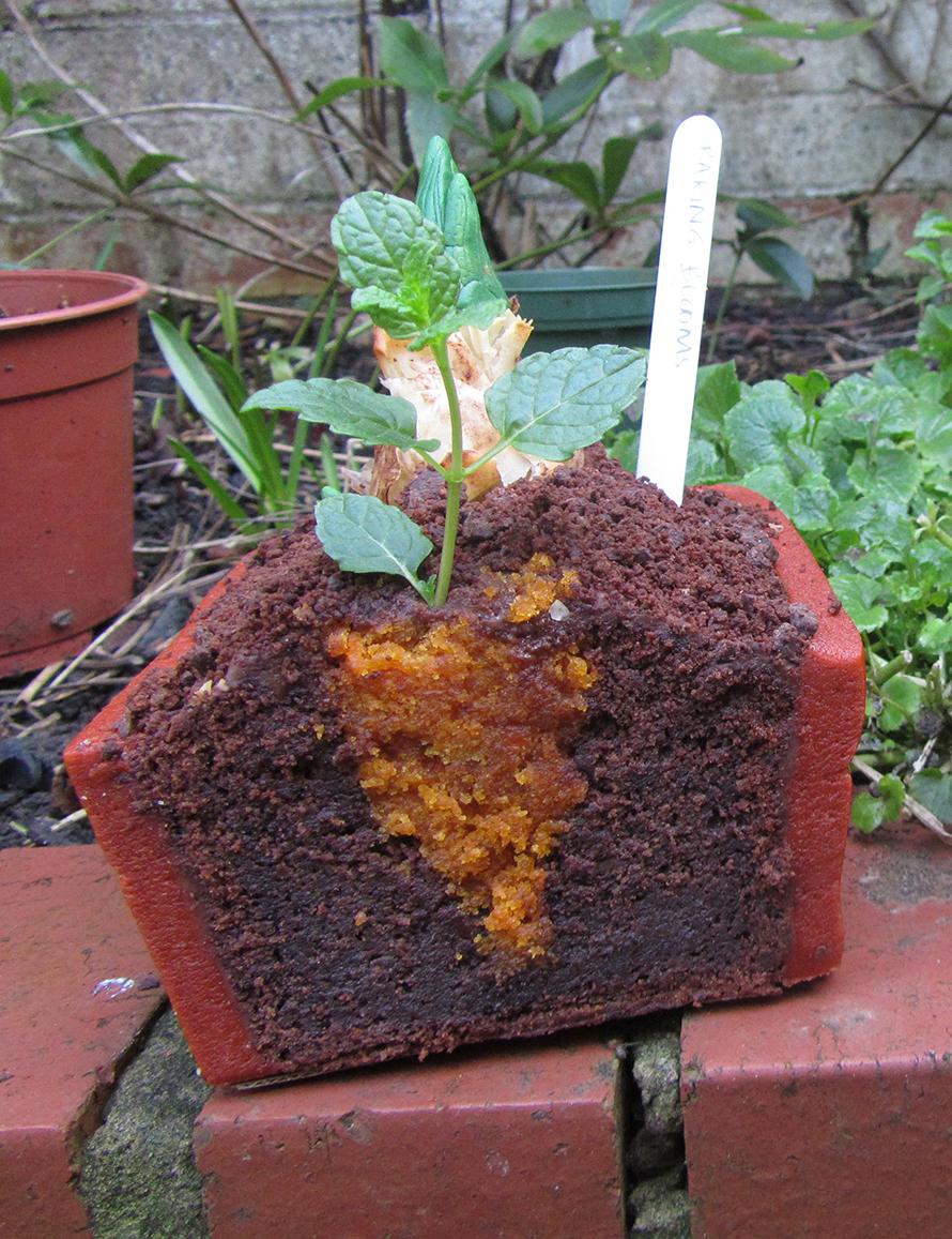 hidden-carrot-cake