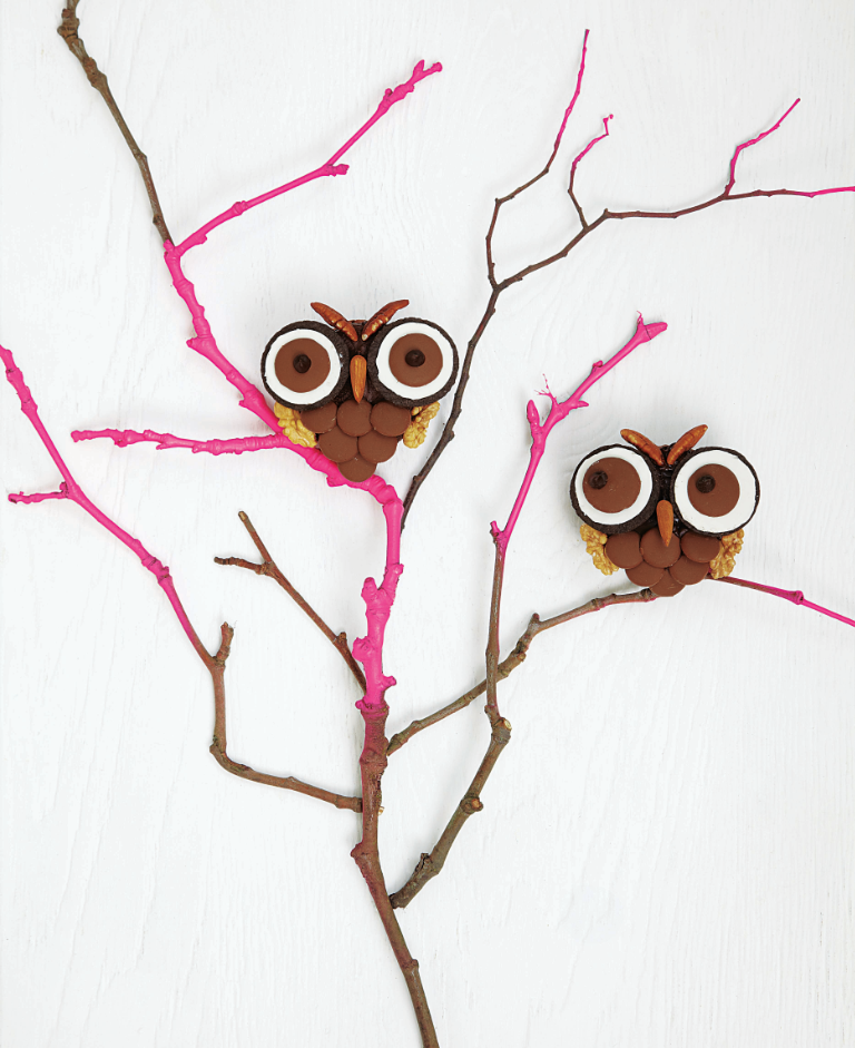 Brownie Owls